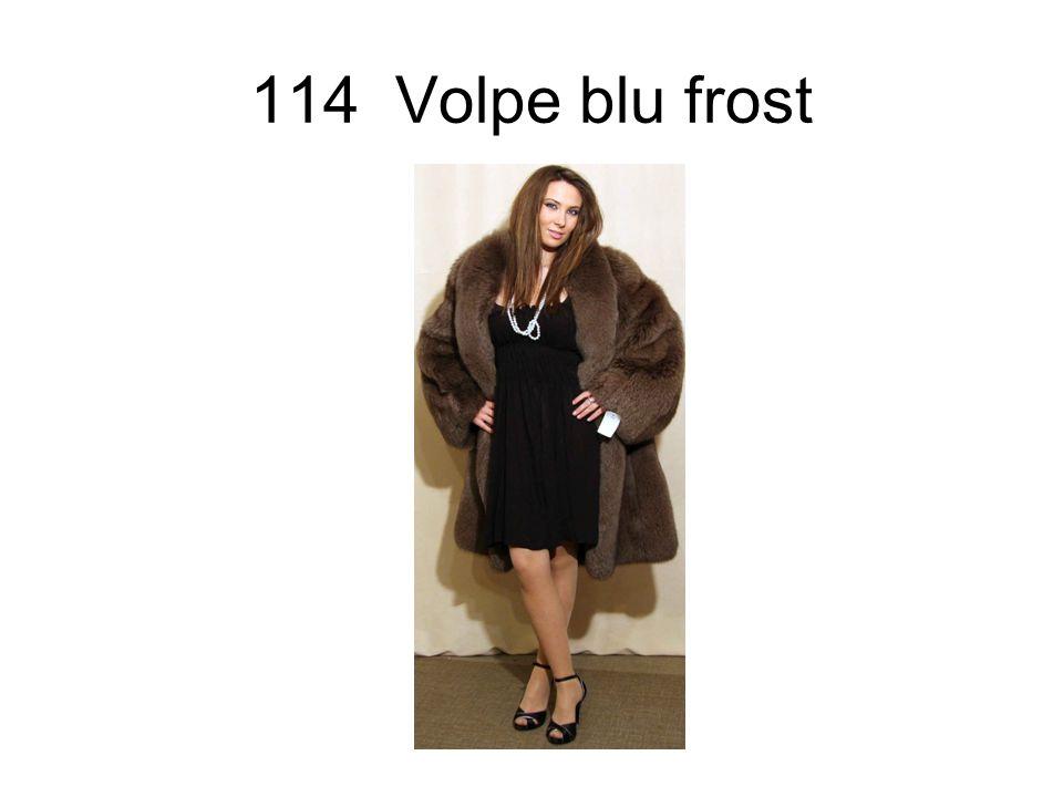 114 Volpe blu frost