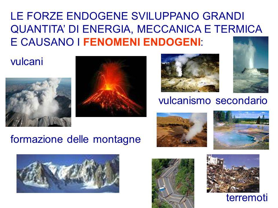 LE FORZE ENDOGENE SVILUPPANO GRANDI QUANTITA' DI ENERGIA, MECCANICA E TERMICA E CAUSANO I FENOMENI ENDOGENI: