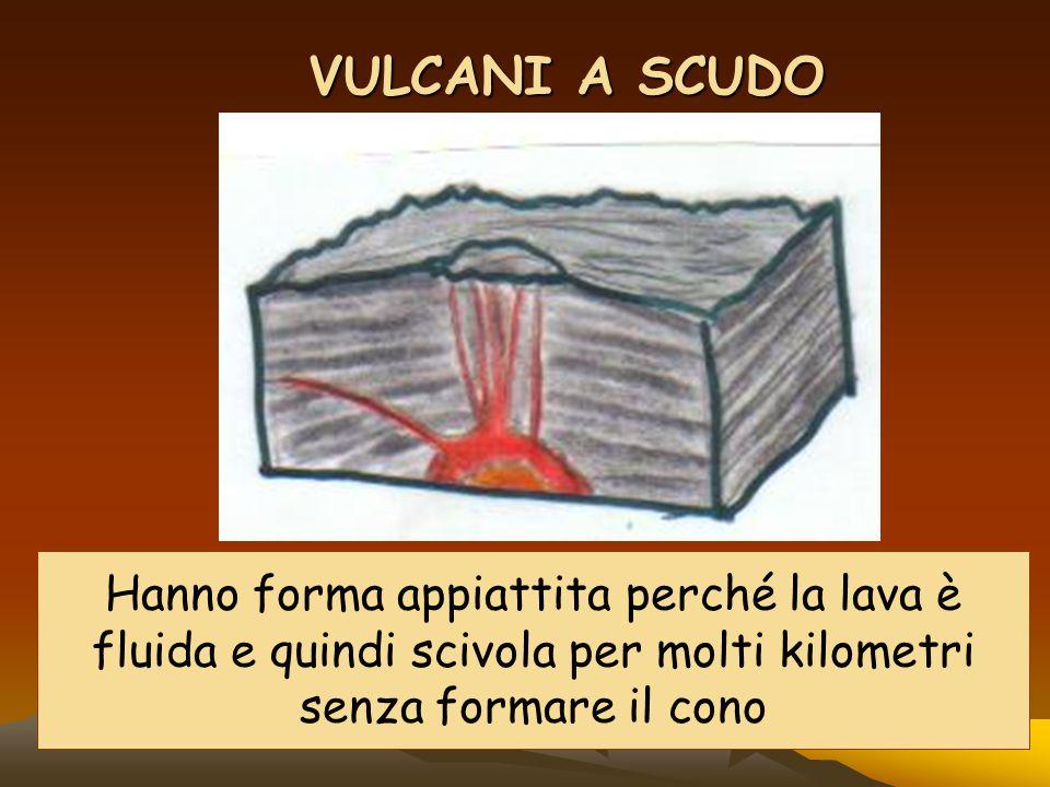 VULCANI A SCUDO Hanno forma appiattita perché la lava è fluida e quindi scivola per molti kilometri senza formare il cono.