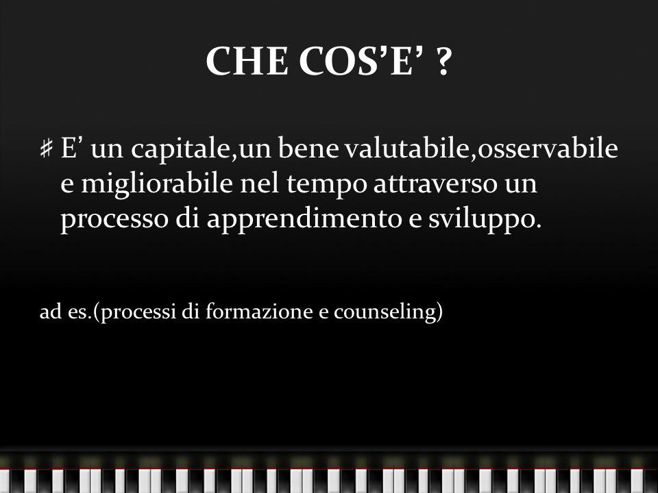 CHE COS'E' E' un capitale,un bene valutabile,osservabile e migliorabile nel tempo attraverso un processo di apprendimento e sviluppo.