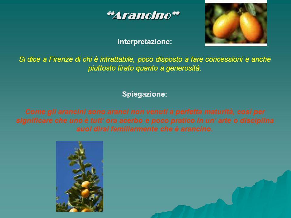 Arancino Interpretazione: