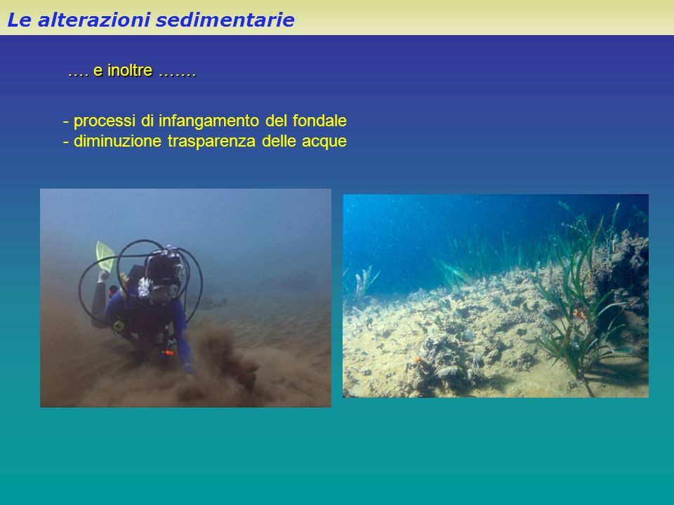 Le alterazioni sedimentarie