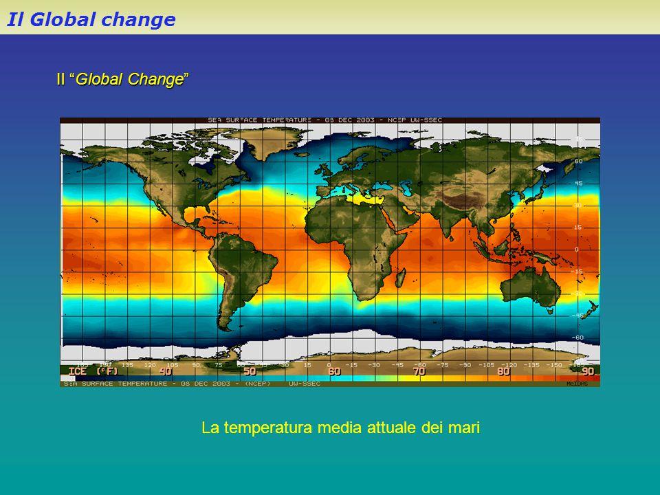 La temperatura media attuale dei mari