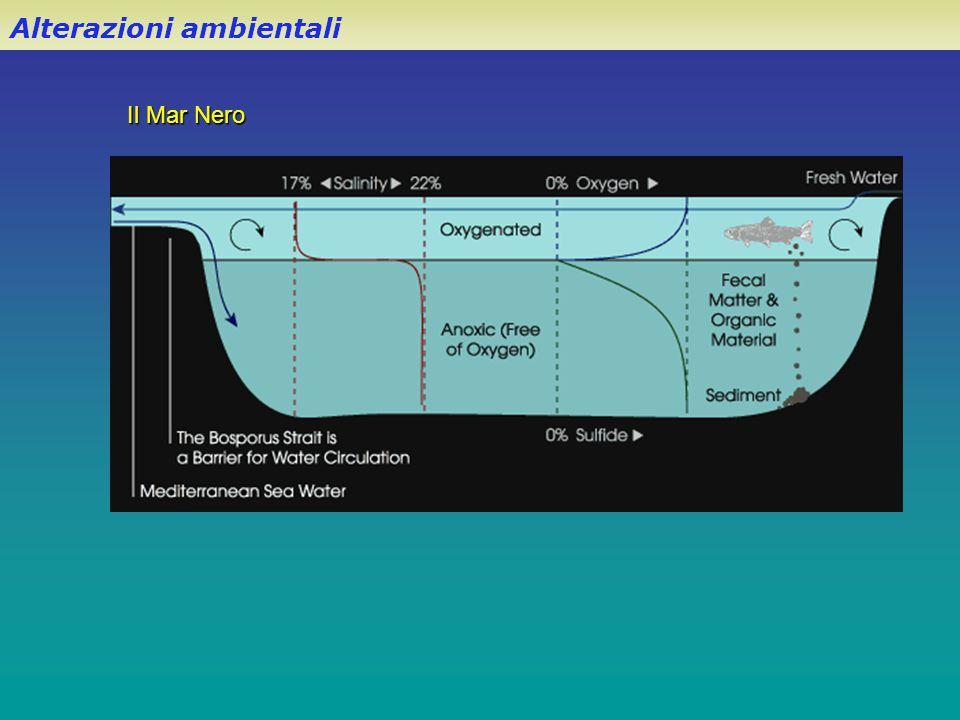Alterazioni ambientali