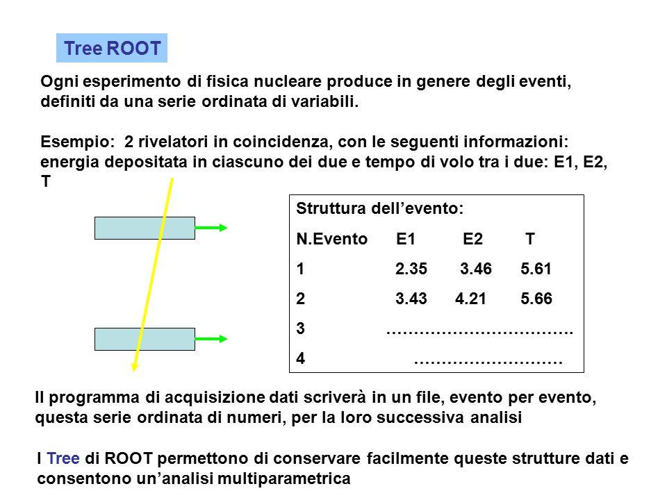 Tree ROOT Ogni esperimento di fisica nucleare produce in genere degli eventi, definiti da una serie ordinata di variabili.