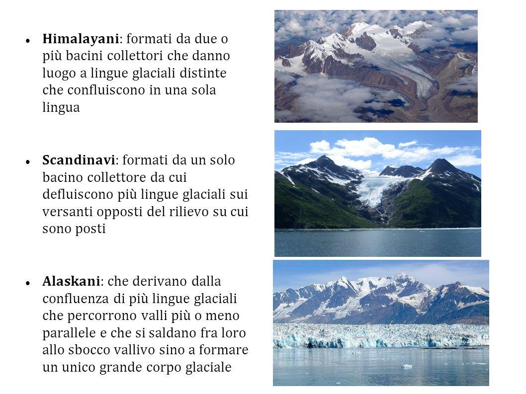 Himalayani: formati da due o più bacini collettori che danno luogo a lingue glaciali distinte che confluiscono in una sola lingua
