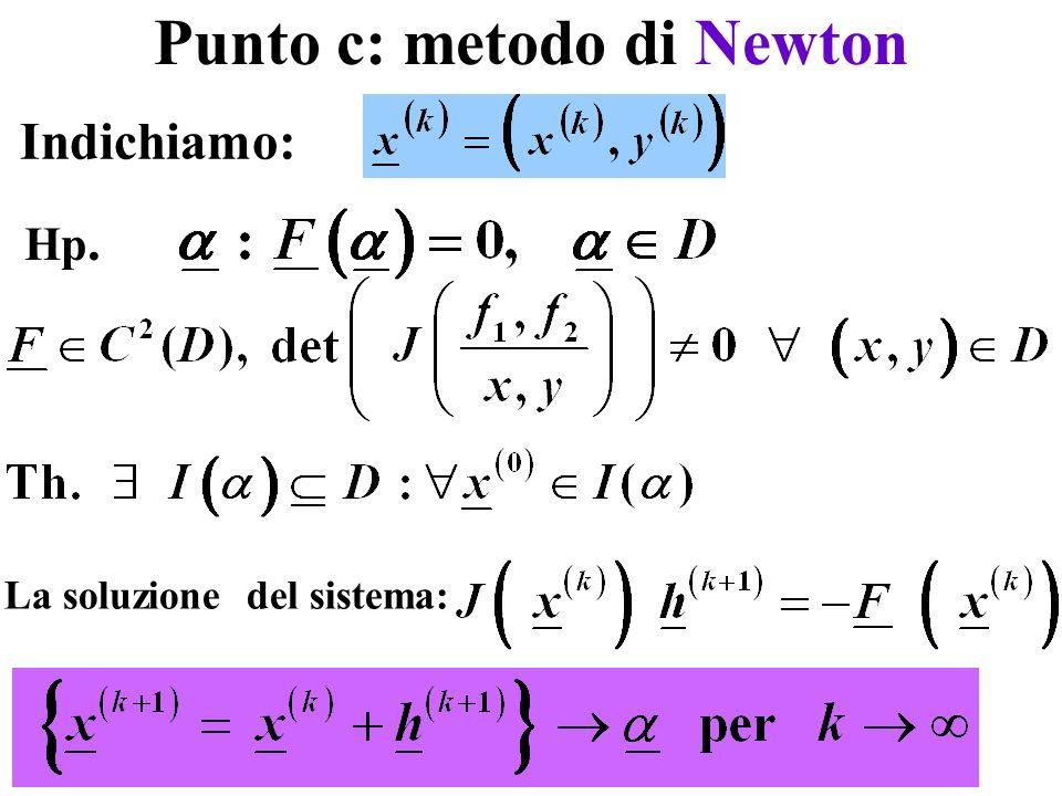 Punto c: metodo di Newton