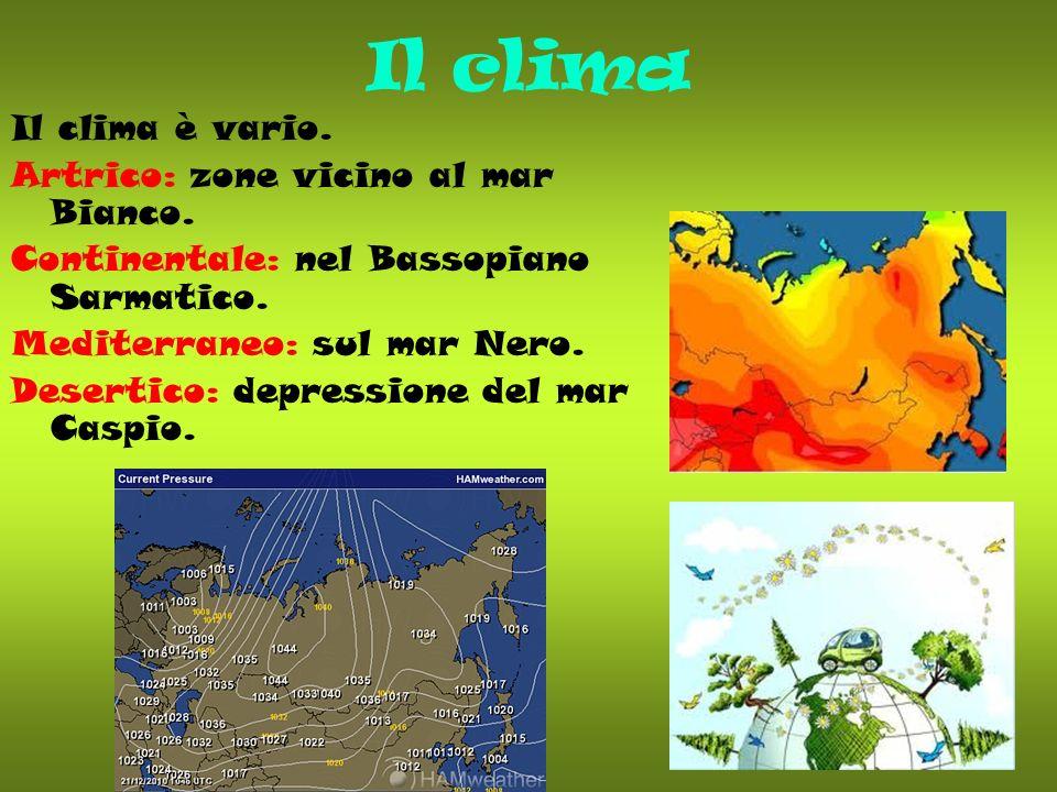Il clima Il clima è vario. Artrico: zone vicino al mar Bianco.