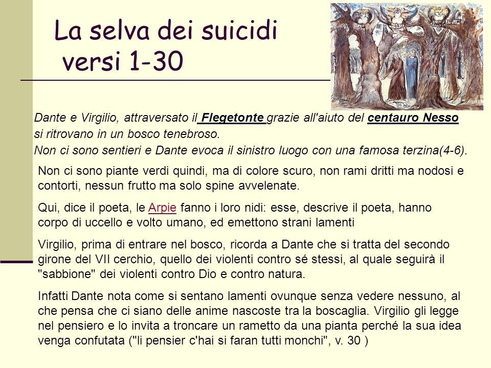 La selva dei suicidi versi 1-30