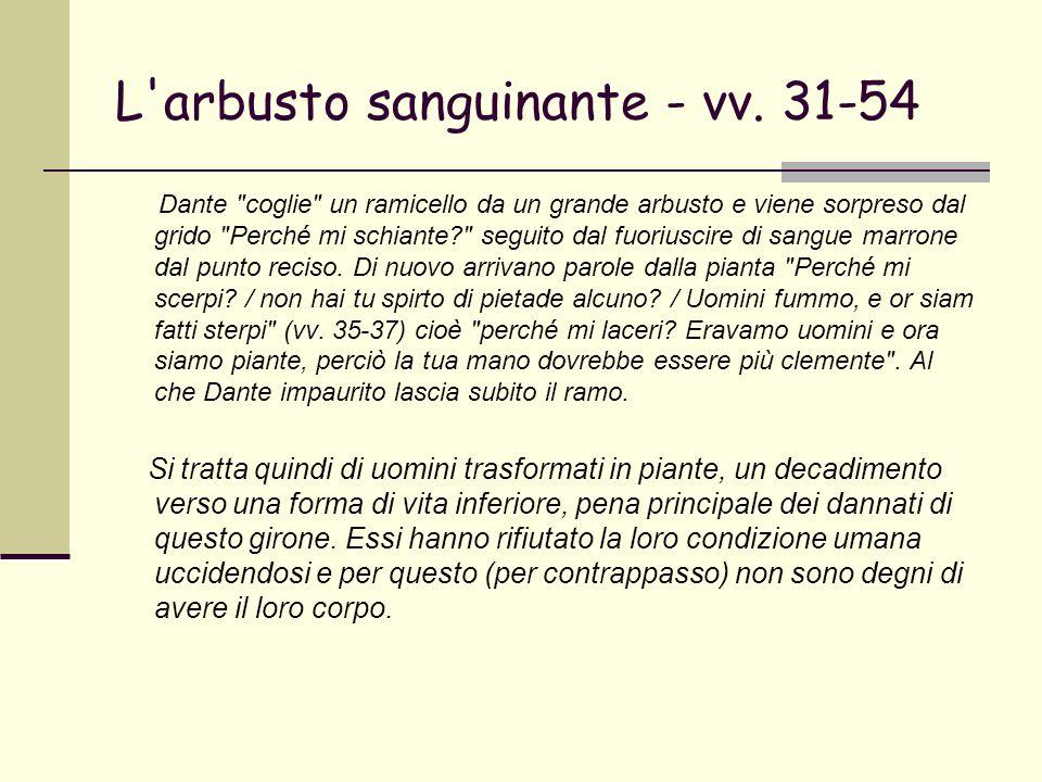 L arbusto sanguinante - vv. 31-54