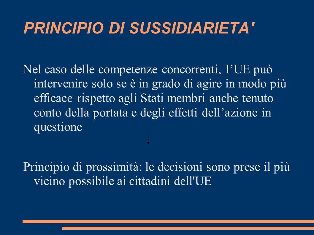 PRINCIPIO DI SUSSIDIARIETA