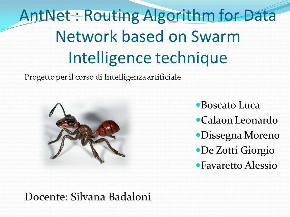 AntNet : Routing Algorithm for Data Network based on Swarm Intelligence technique