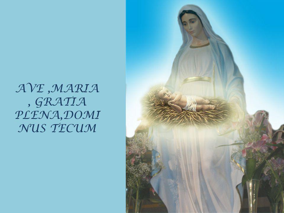 AVE ,MARIA , GRATIA PLENA,DOMINUS TECUM
