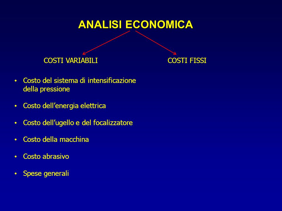 ANALISI ECONOMICA COSTI VARIABILI COSTI FISSI