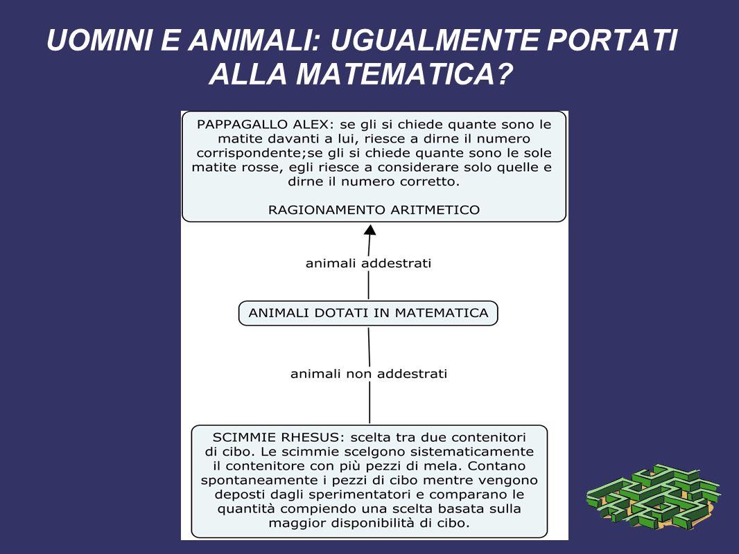 UOMINI E ANIMALI: UGUALMENTE PORTATI ALLA MATEMATICA