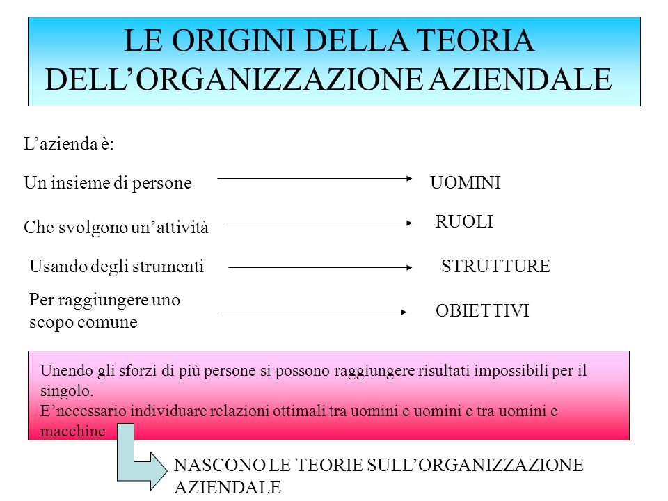 LE ORIGINI DELLA TEORIA DELL'ORGANIZZAZIONE AZIENDALE