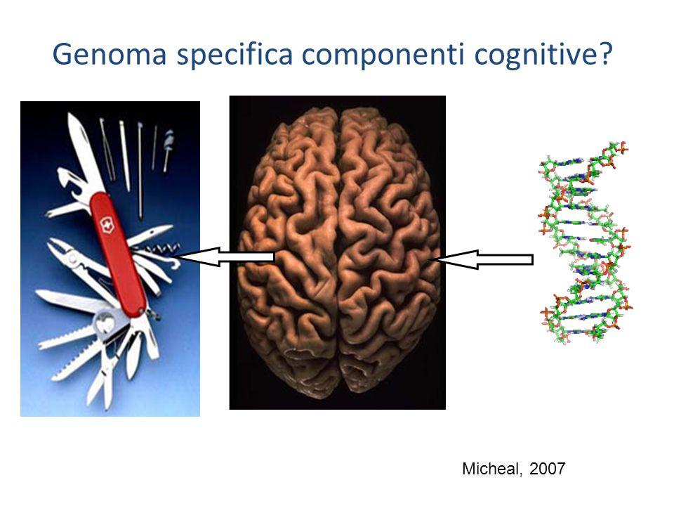 Genoma specifica componenti cognitive