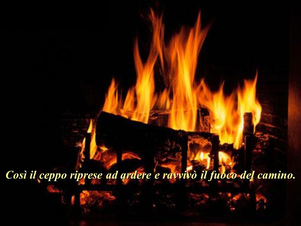 Così il ceppo riprese ad ardere e ravvivò il fuoco del camino.