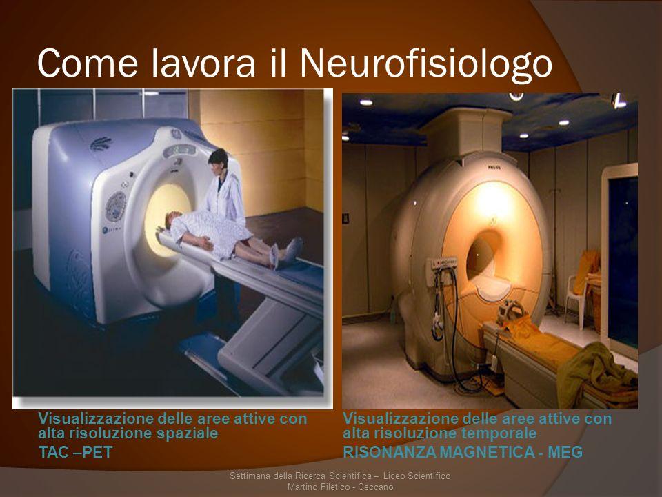 Come lavora il Neurofisiologo