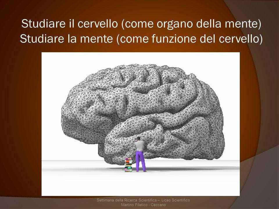 Studiare il cervello (come organo della mente) Studiare la mente (come funzione del cervello)