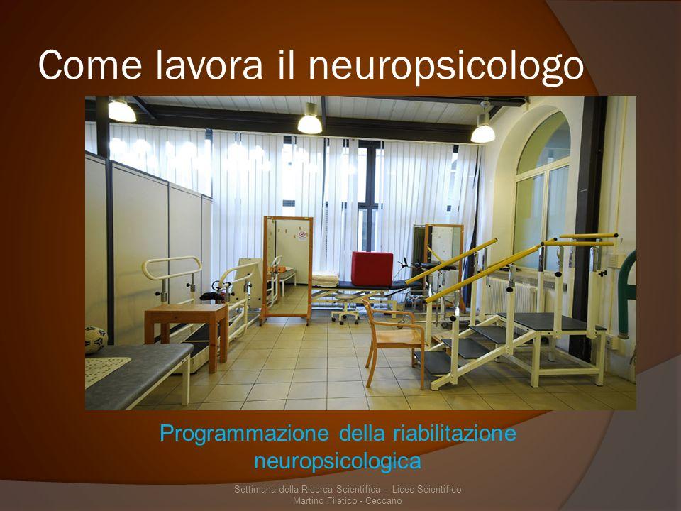 Come lavora il neuropsicologo