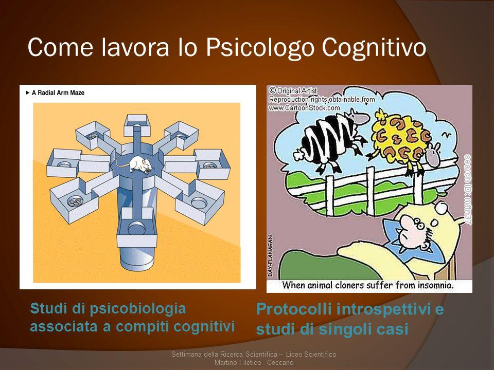 Come lavora lo Psicologo Cognitivo