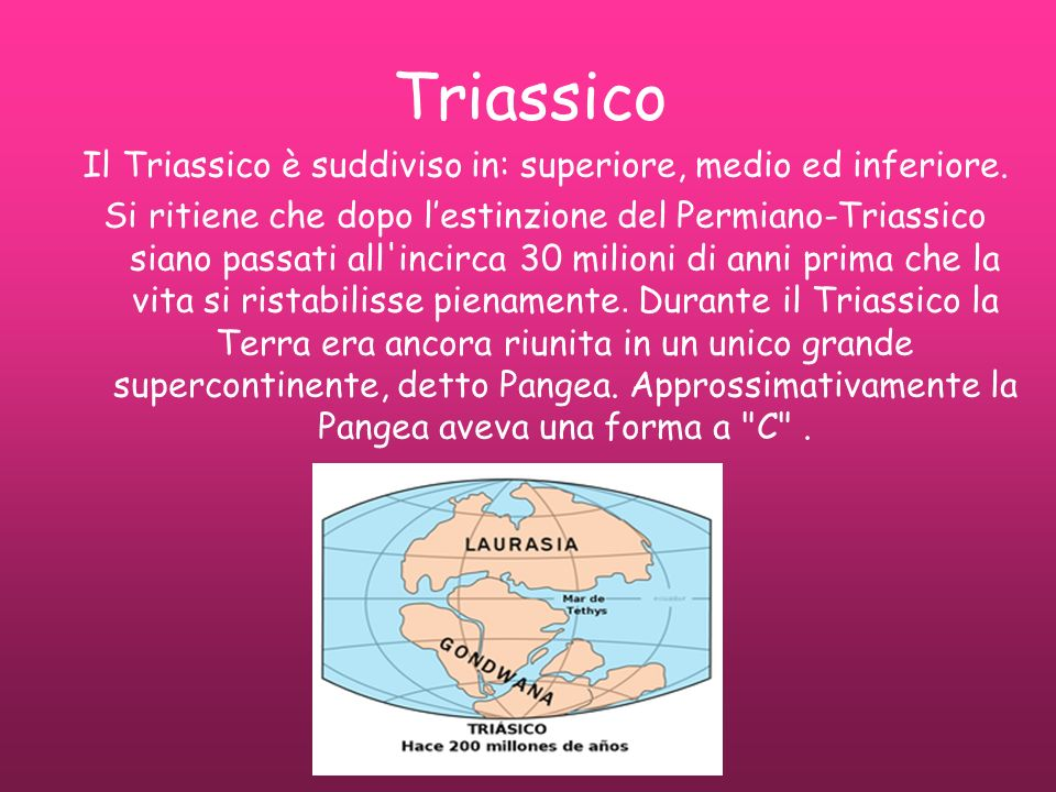 Il Triassico è suddiviso in: superiore, medio ed inferiore.