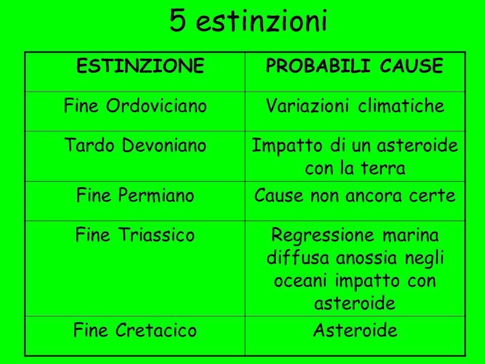 5 estinzioni ESTINZIONE PROBABILI CAUSE Fine Ordoviciano