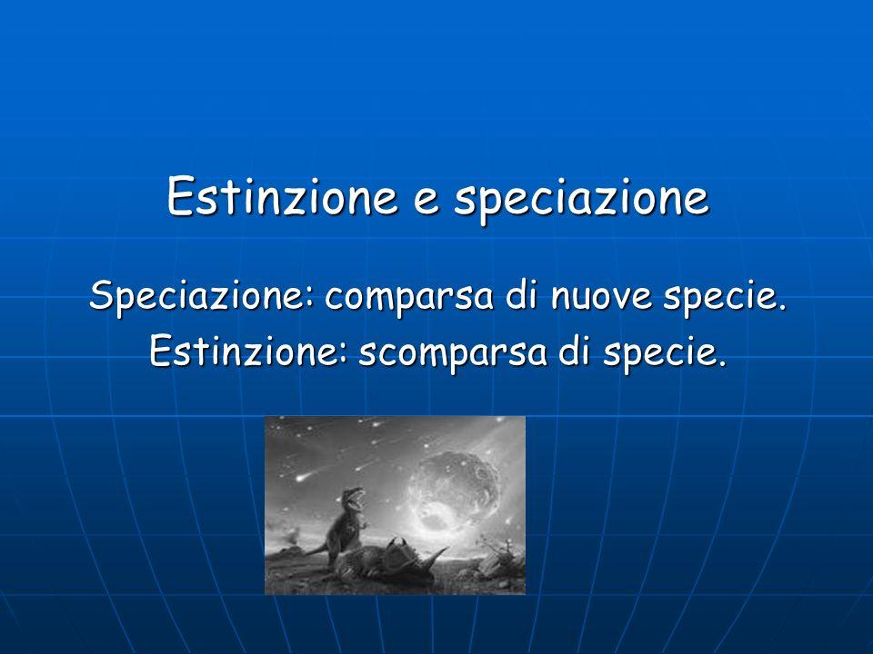 Estinzione e speciazione