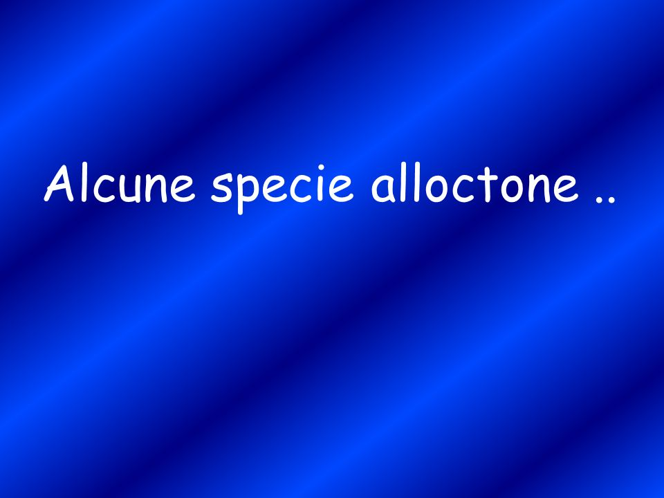 Alcune specie alloctone ..
