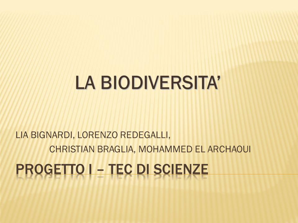 PROGETTO I – TEC di scienze