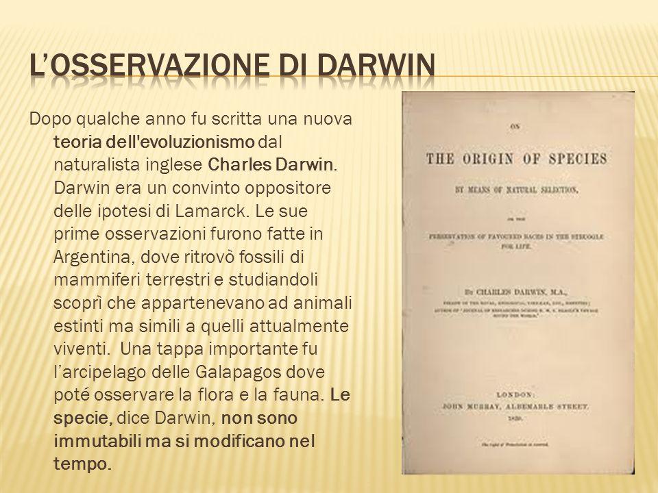 L'osservazione di Darwin