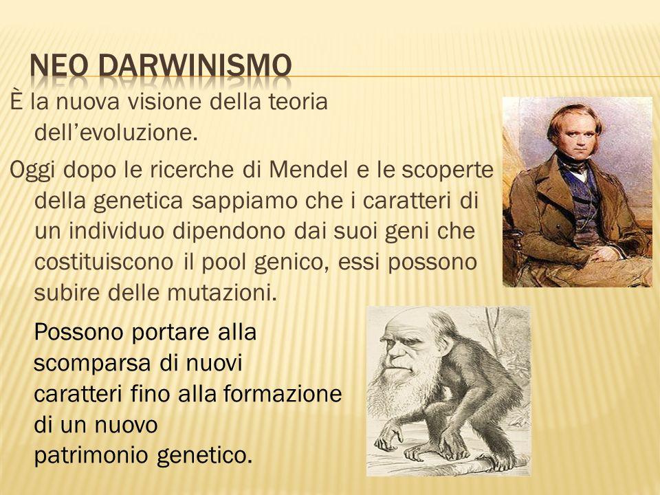 Neo darwinismo