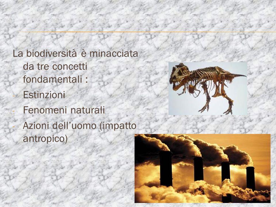 La biodiversità è minacciata da tre concetti fondamentali :