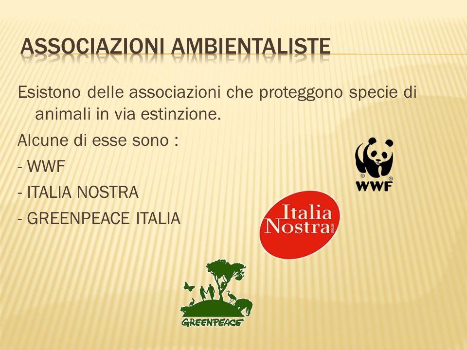 Associazioni ambientaliste