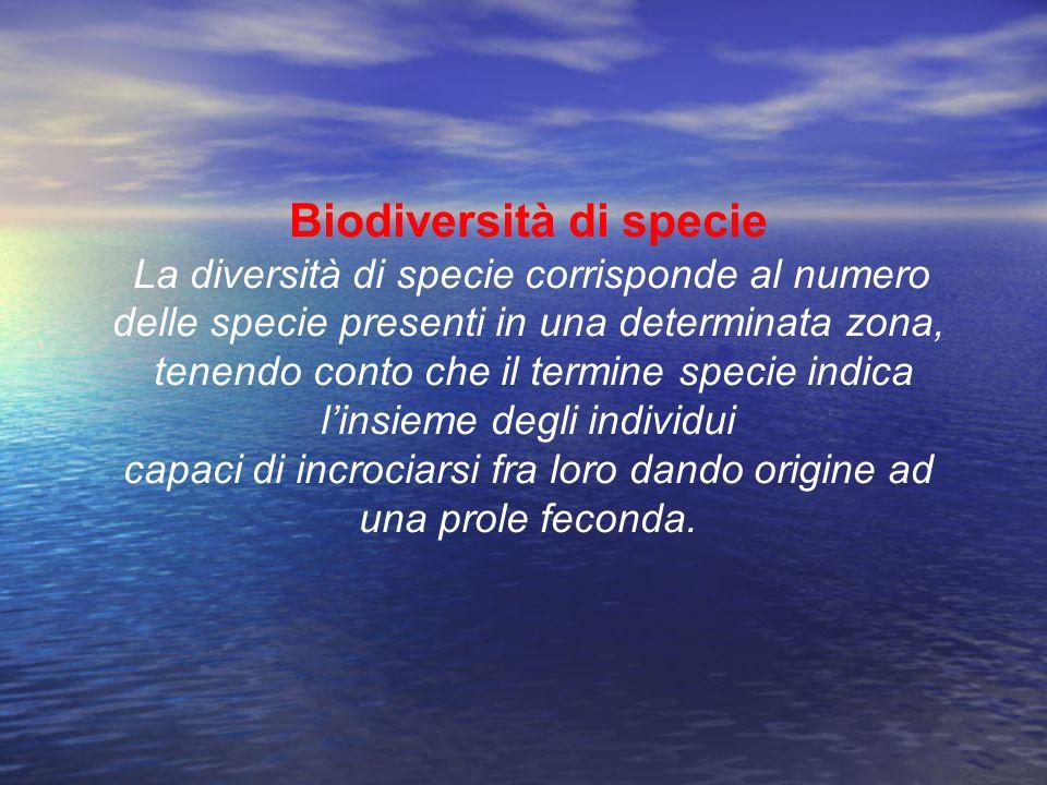 Biodiversità di specie