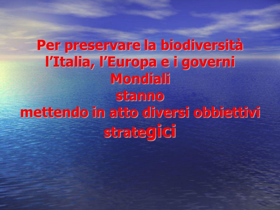 Per preservare la biodiversità l'Italia, l'Europa e i governi Mondiali stanno mettendo in atto diversi obbiettivi strategici