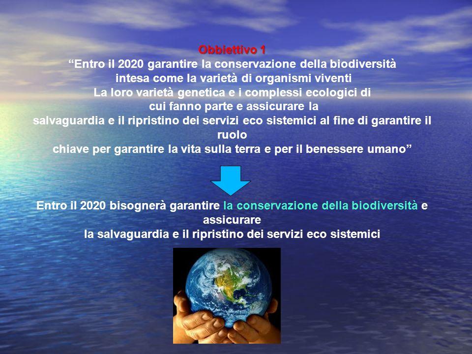 Entro il 2020 garantire la conservazione della biodiversità