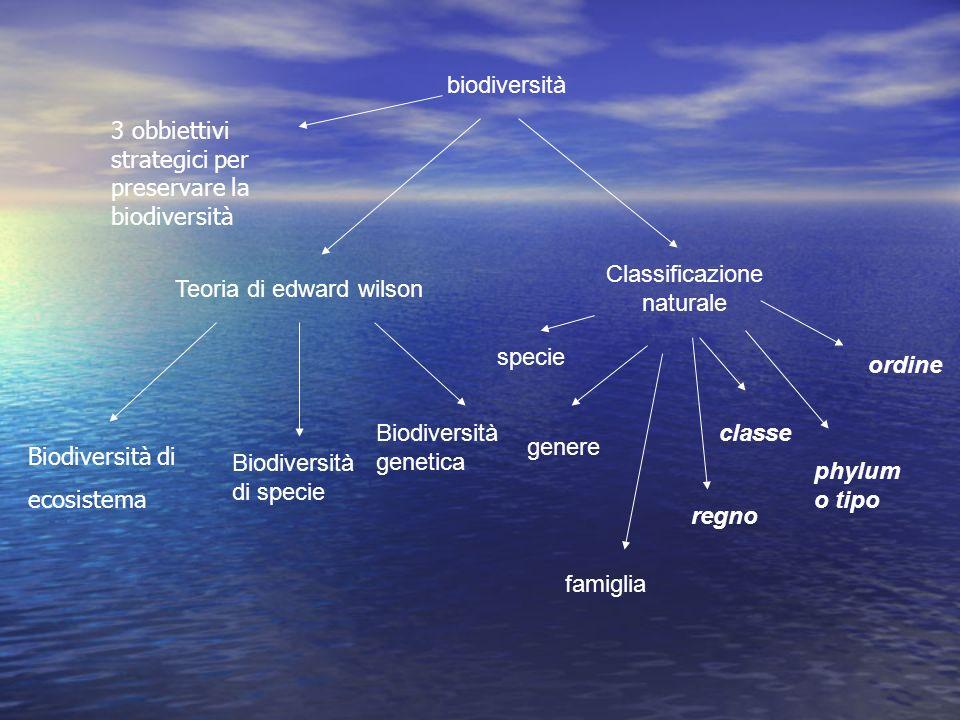 3 obbiettivi strategici per preservare la biodiversità