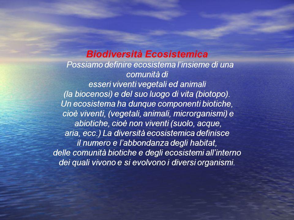 Biodiversità Ecosistemica