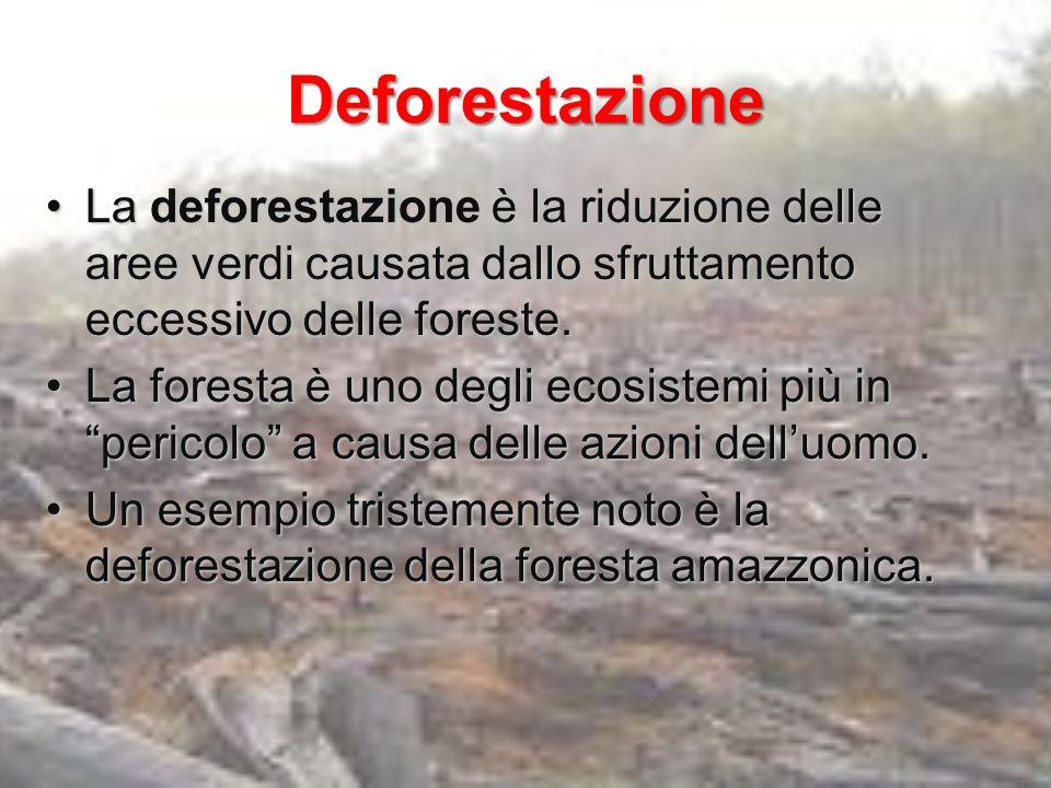 Deforestazione La deforestazione è la riduzione delle aree verdi causata dallo sfruttamento eccessivo delle foreste.