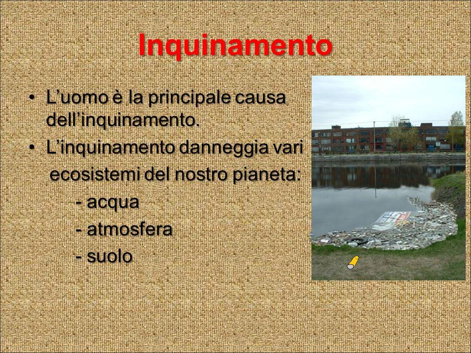 Inquinamento L'uomo è la principale causa dell'inquinamento.