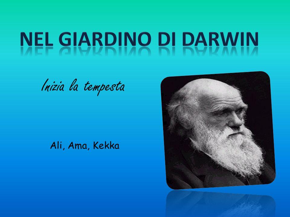 Nel giardino di Darwin Inizia la tempesta Ali, Ama, Kekka