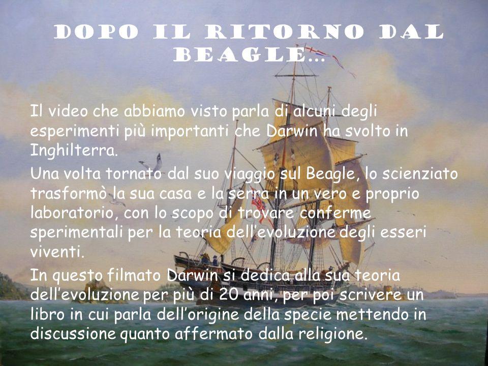 DOPO IL RITORNO Dal BEAGLE…