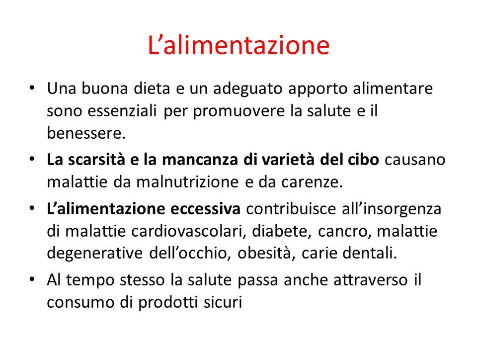 L'alimentazione Una buona dieta e un adeguato apporto alimentare sono essenziali per promuovere la salute e il benessere.