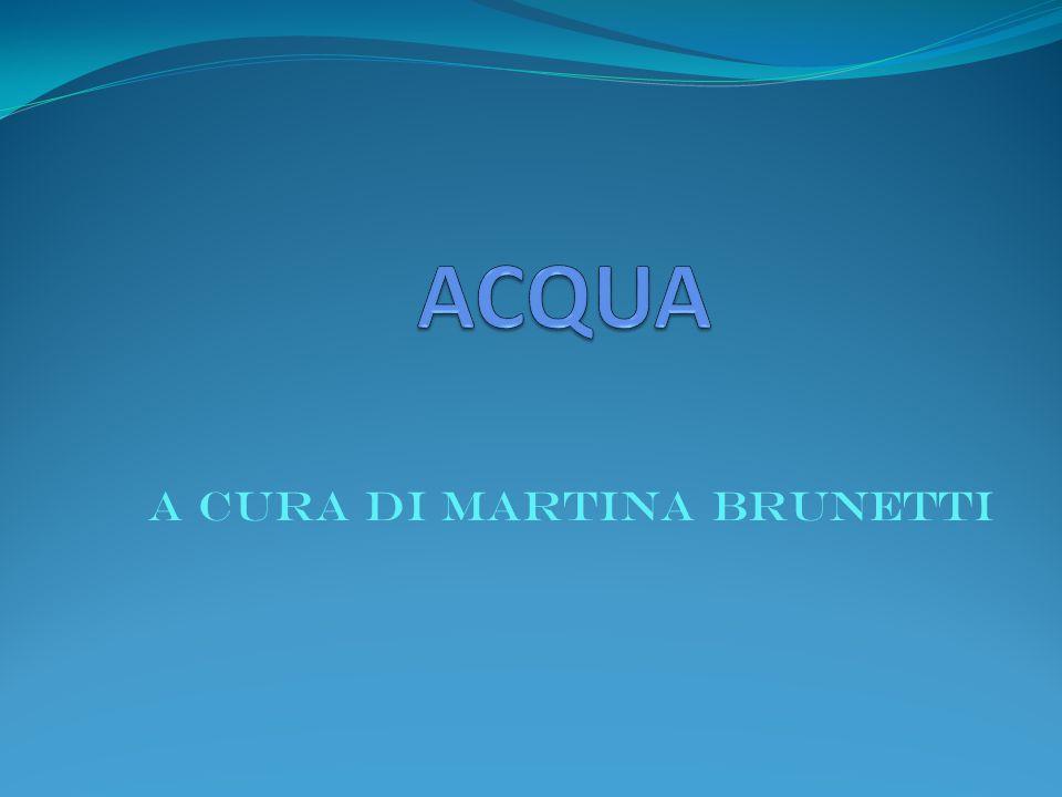 ACQUA A cura di Martina Brunetti