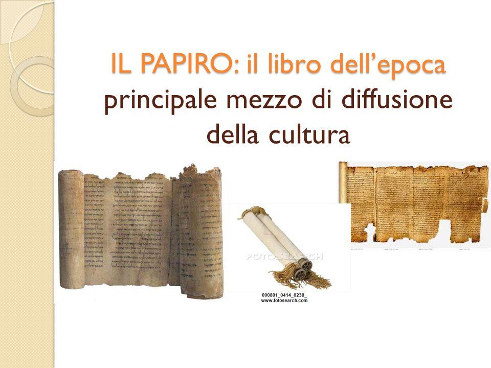 IL PAPIRO: il libro dell'epoca principale mezzo di diffusione della cultura