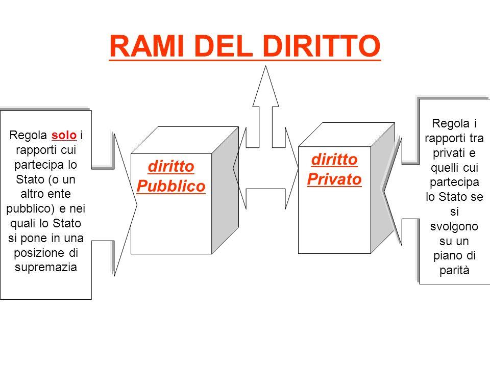 RAMI DEL DIRITTO diritto diritto Privato Pubblico