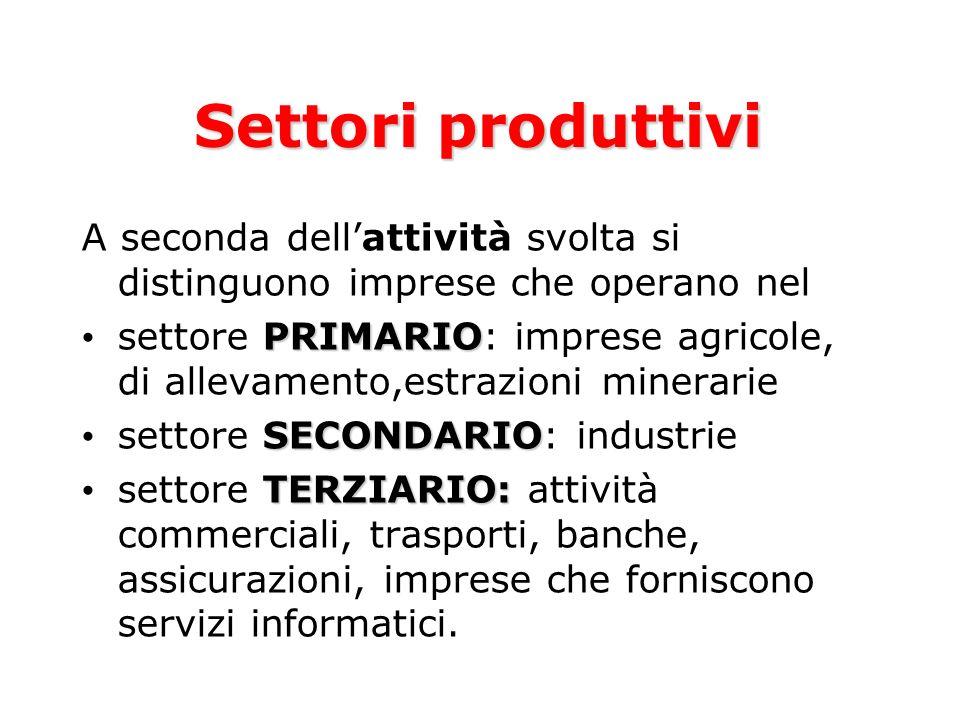 Settori produttivi A seconda dell'attività svolta si distinguono imprese che operano nel.