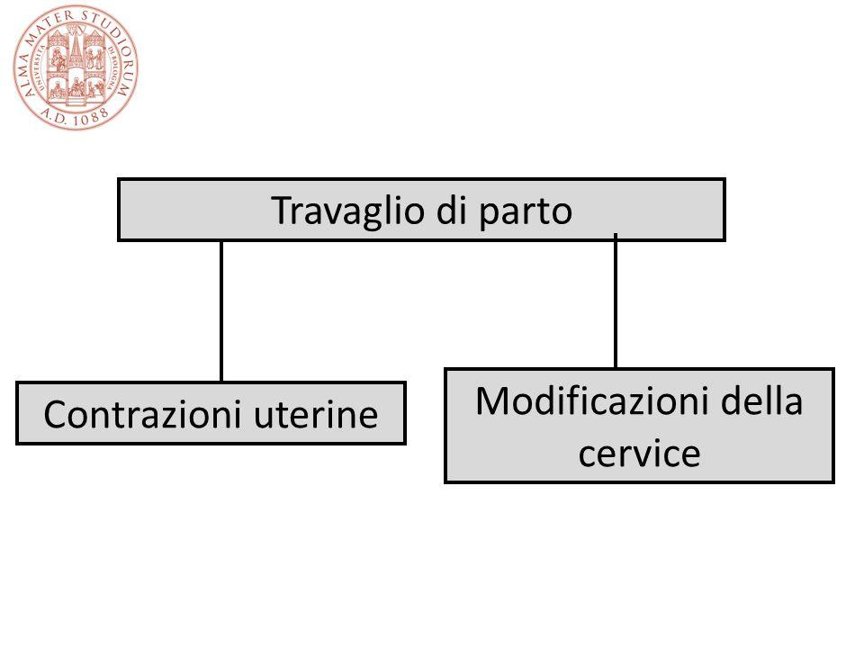 Modificazioni della cervice